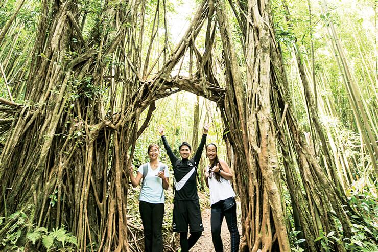マノア渓谷の原生林の中を探索できる姉妹ツアー「ネイチャー&ユー」も人気。緑豊かな自然に癒やされてみては?/ネイチャー&ユー料金:$64(4歳~)