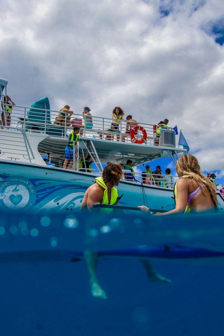 ハワイの海を思いっきり満喫する欲張りツアー