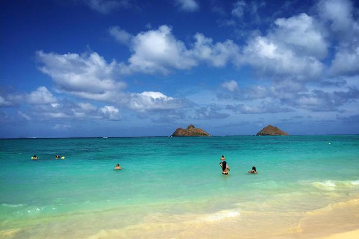 ハワイの今をチェック  日刊ローカルニュース