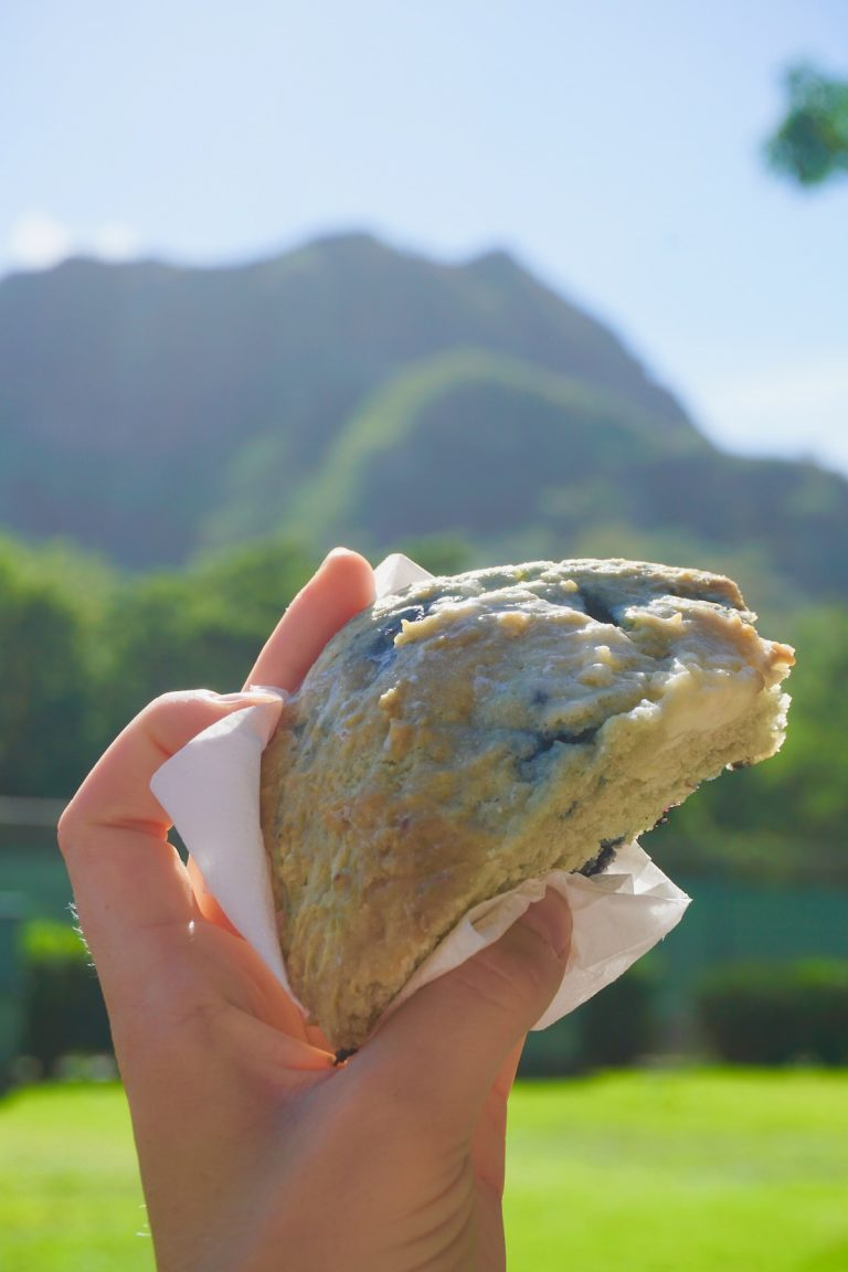 見どころいっぱい、お腹もいっぱい、大満足の島巡りツアー