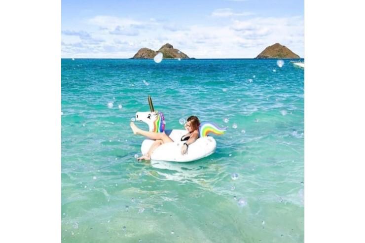 新オプション登場でビーチツアーがもっと楽しい!