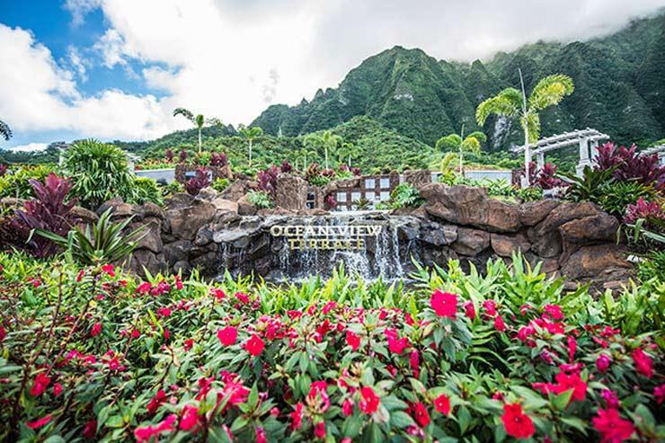 日本在住でもハワイ終活が可能!