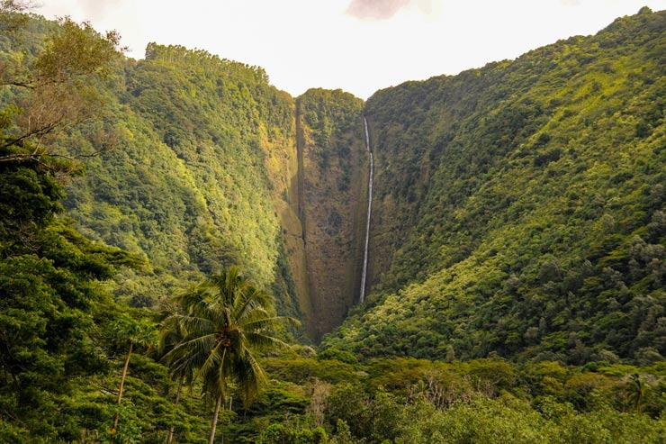 滝が流れ落ちる海辺の谷…ハワイ島ワイピオ編
