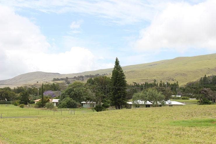 ハワイ島のワイメアの景色