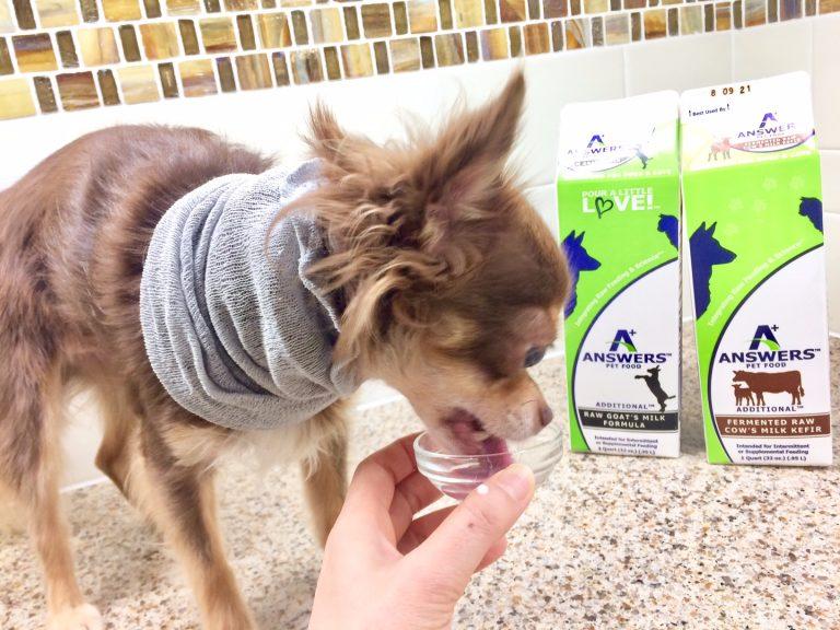 カルビン&スージー:ミルク大好き