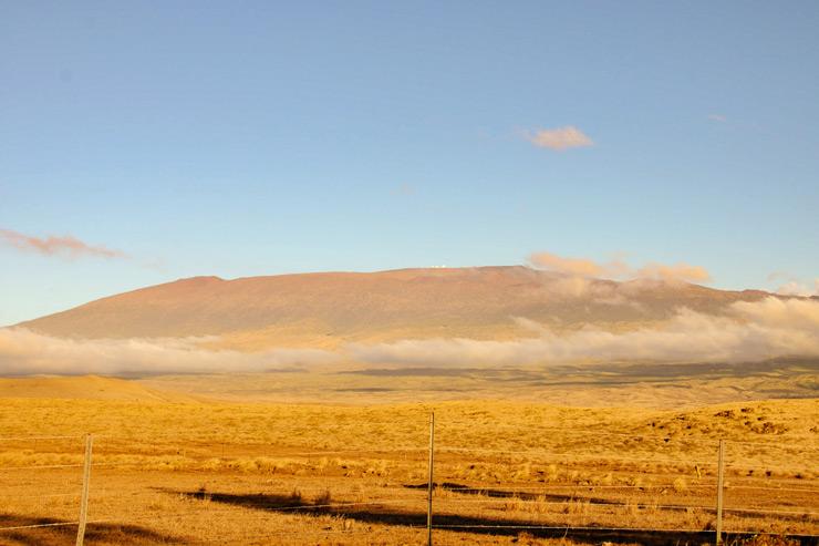 強い風が吹き抜ける高原地帯…ハワイ島ワイメア編