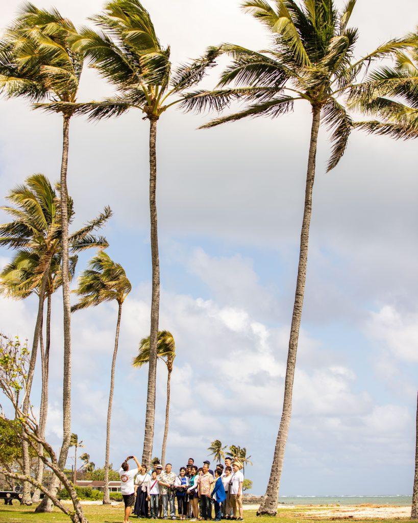 ハワイにサクラの名所があるってホント?