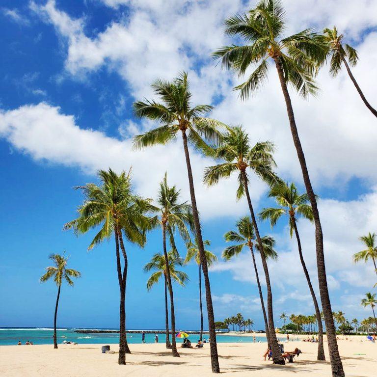 ハワイらしいお天気♪