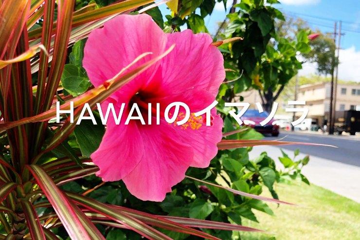 アロハをお届け!ハワイのイマソラ総集編 6月1週め