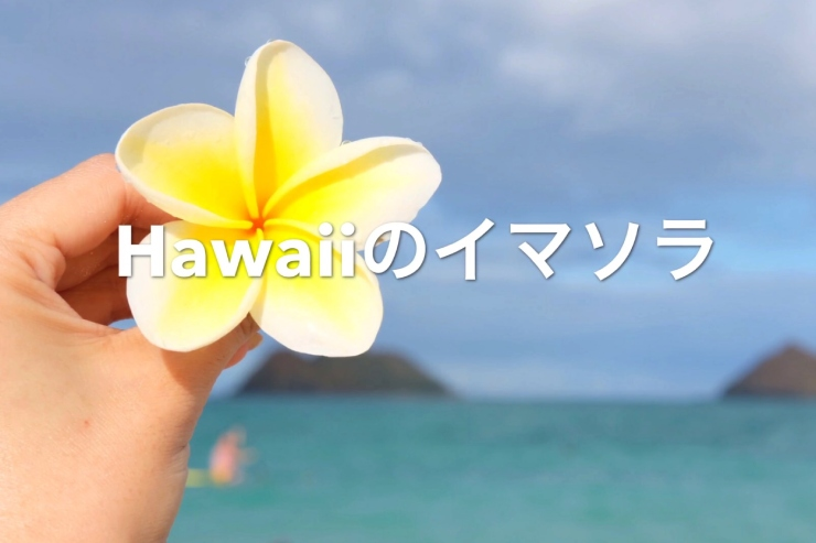 アロハをお届け!ハワイのイマソラ総集編 8月2週め