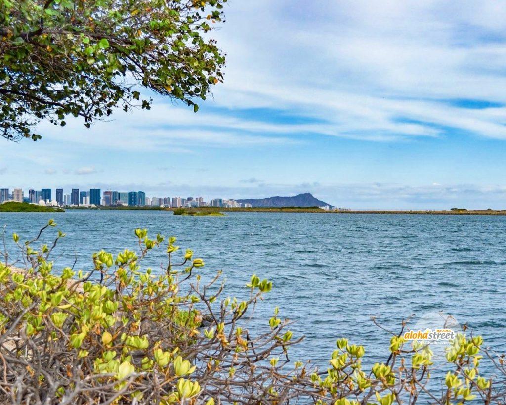 街と自然が調和するハワイ