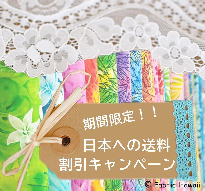 期間限定!見逃せない日本へのおトクな特別送料キャンペーン