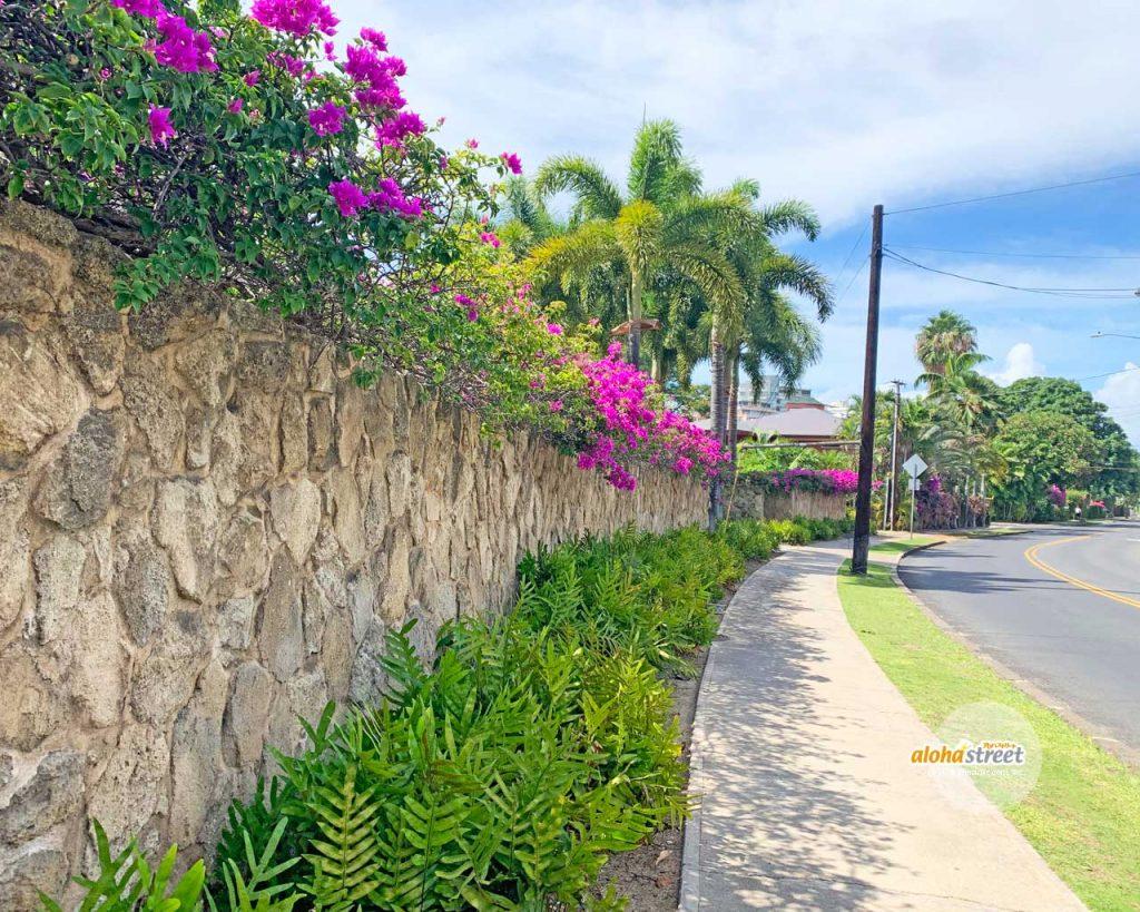 花や緑でいっぱいのハワイの街