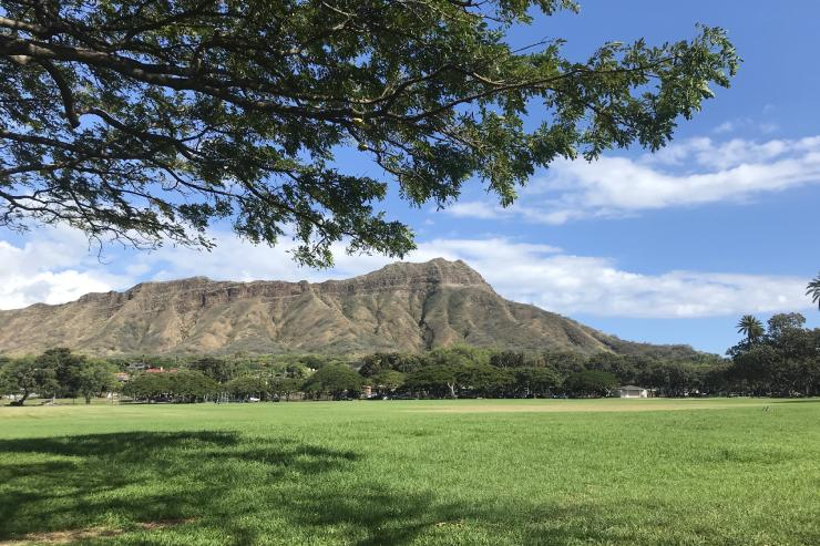 イベント満載!1月のハワイの見所まとめ