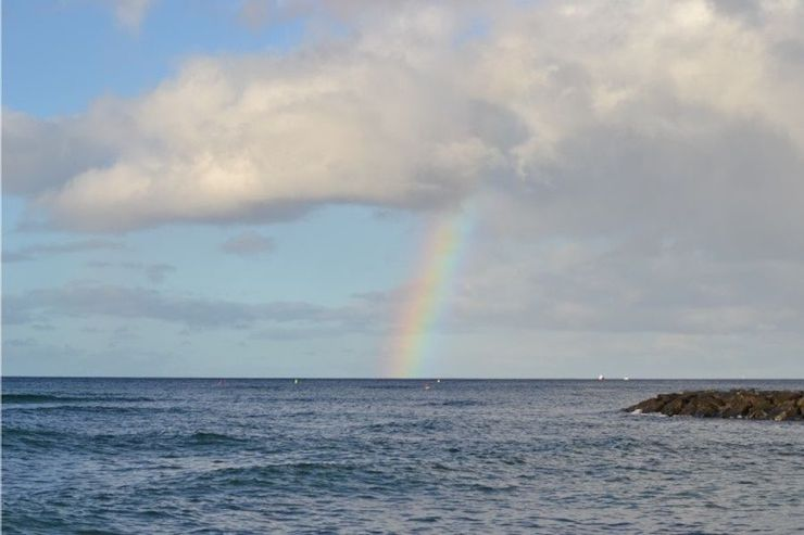 今週ハワイで起こったこと1月2週め【チャット】