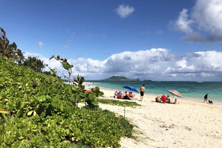 学生旅行のシーズン到来、3月のハワイの見所まとめ