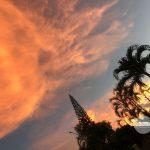 一面に広がるオレンジの空にうっとり