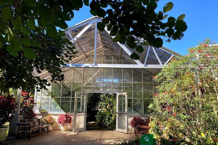 熱帯植物を集めた温室