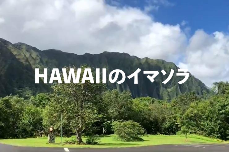 アロハをお届け!ハワイのイマソラ総集編 2月3週め