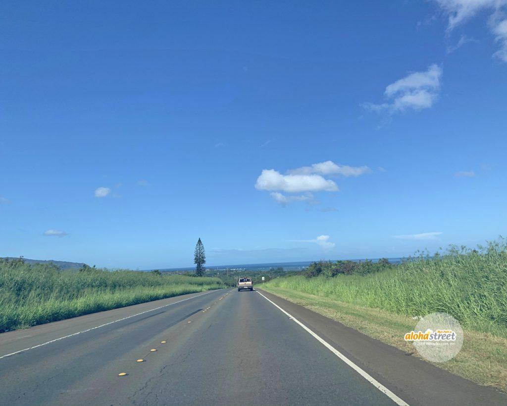 ハワイ晴れの日にノースへ続く1本道をドライブ