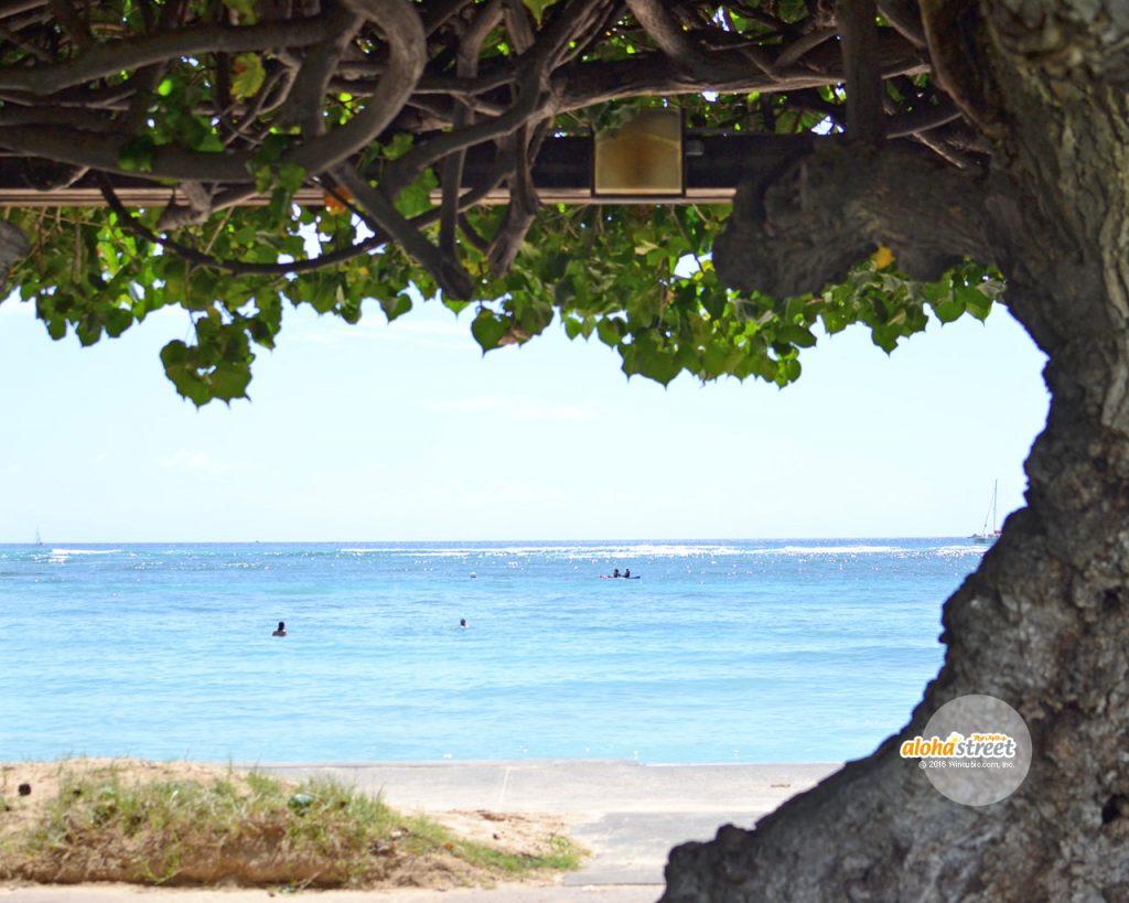 風が気持ち良い海辺の木陰でのんびり