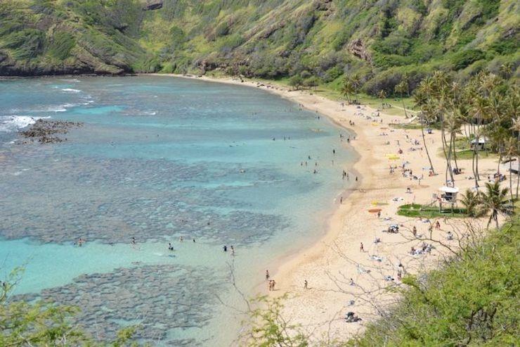 今週ハワイで起こったこと2021年4月2週め【チャット】
