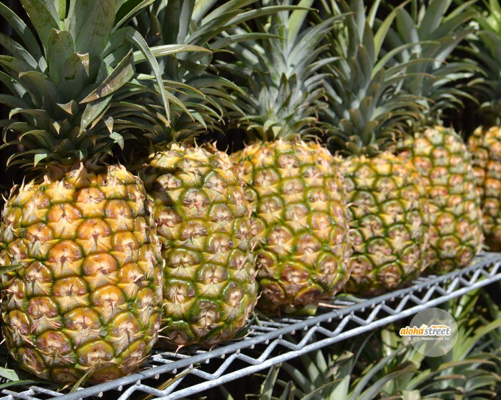 ハワイの太陽をたっぷり浴びたパイナップル