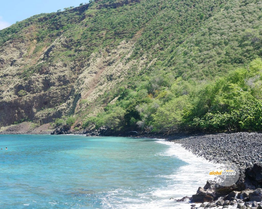 パワーを感じるハワイ島の大自然