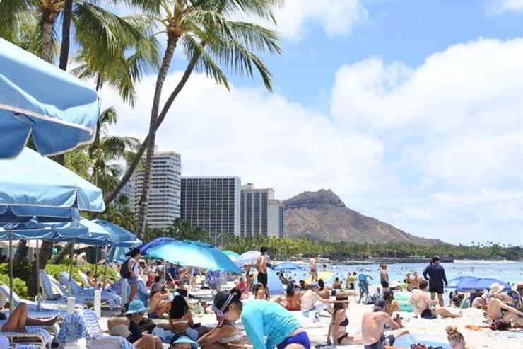 今週ハワイで起こったこと2021年7月5週め【チャット】