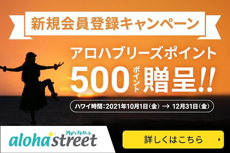 500円分のポイントゲット!新規会員登録キャンペーン