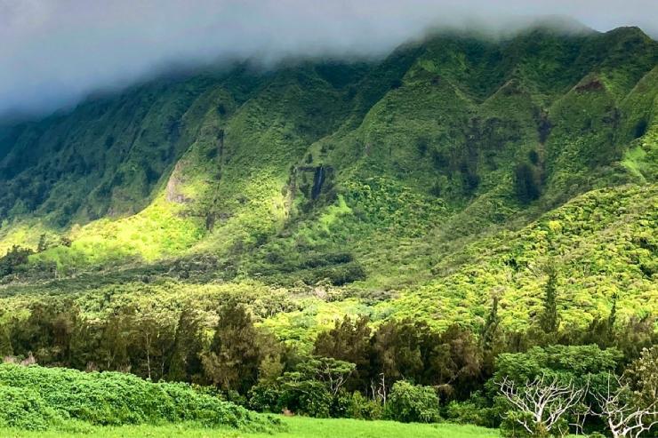 メレを旅するハワイ〜ヌウアヌの滝